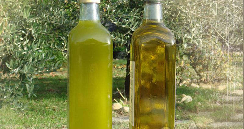Aceite de Oliva Virgen Extra y salud